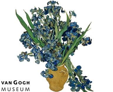 Flat Flower Special Van Gogh Iris